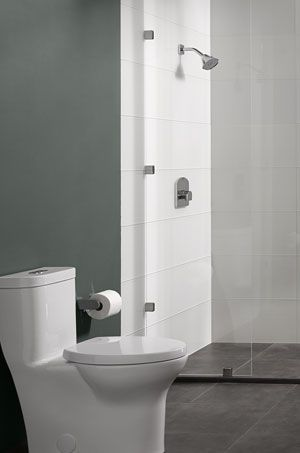 Inspiring Bathrooms At Ferguson.com Type Of Toilet And Floor To Shower Idea  I Want