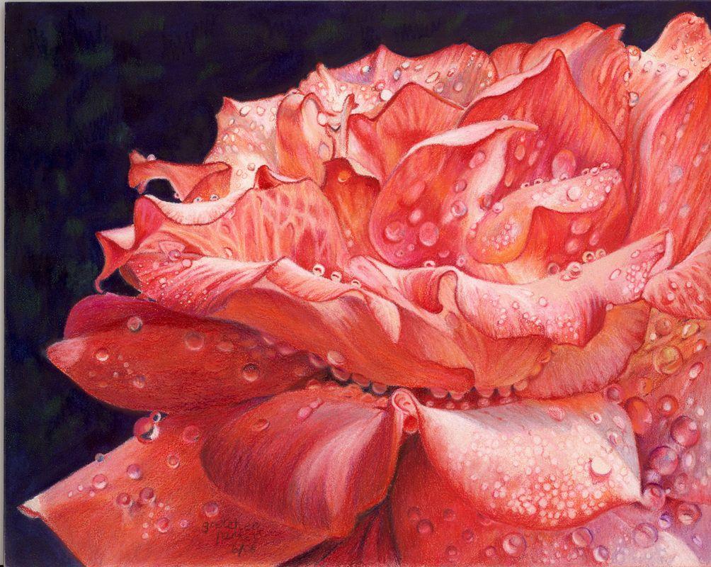 Florals & Still Lifes - Gretchen Evans Parker, cpsa   ART ...