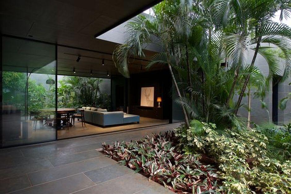 Amazing Artistic Tree Inside House Interior Design 57 Courtyard House Courtyard House Plans Interior Garden