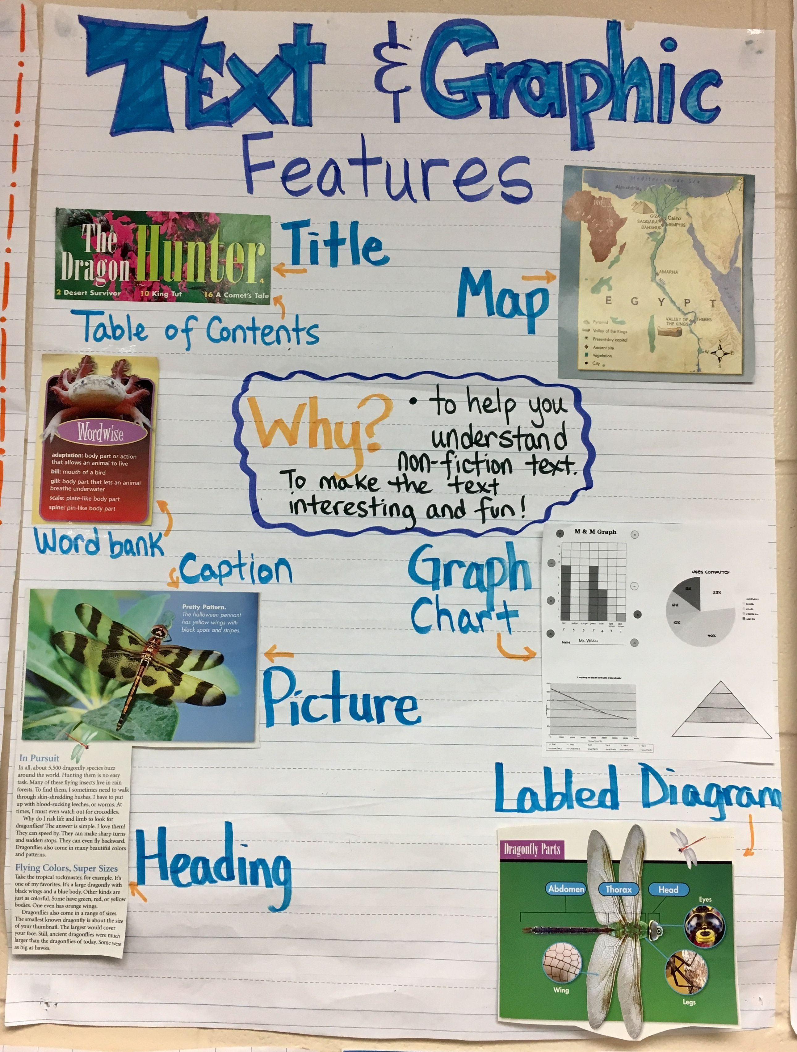 Text And Graphic Features Of Nonfiction