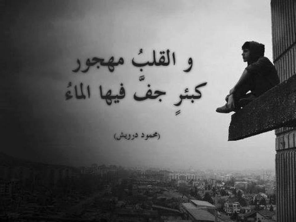 صور مضحكة صور اطفال صور و حكم موقع صور Arabic Quotes Arabic Quotes Arabic Calligraphy Quotes