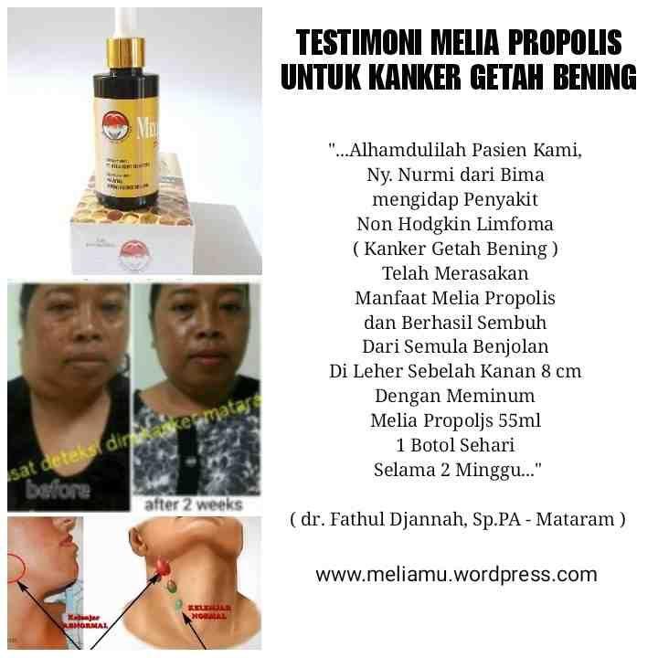 Jual Khasiat Melia Propolis Asli Original untuk Kesehatan obat penyakit