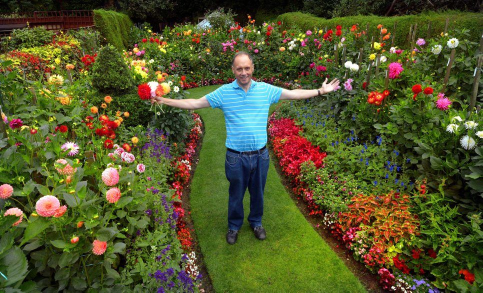 Genial GEOFF AND HEATHERS DAHLIA GARDEN | Geoff Hoyle, Whose Spectacular Garden  Attracted Over 800 Visitors