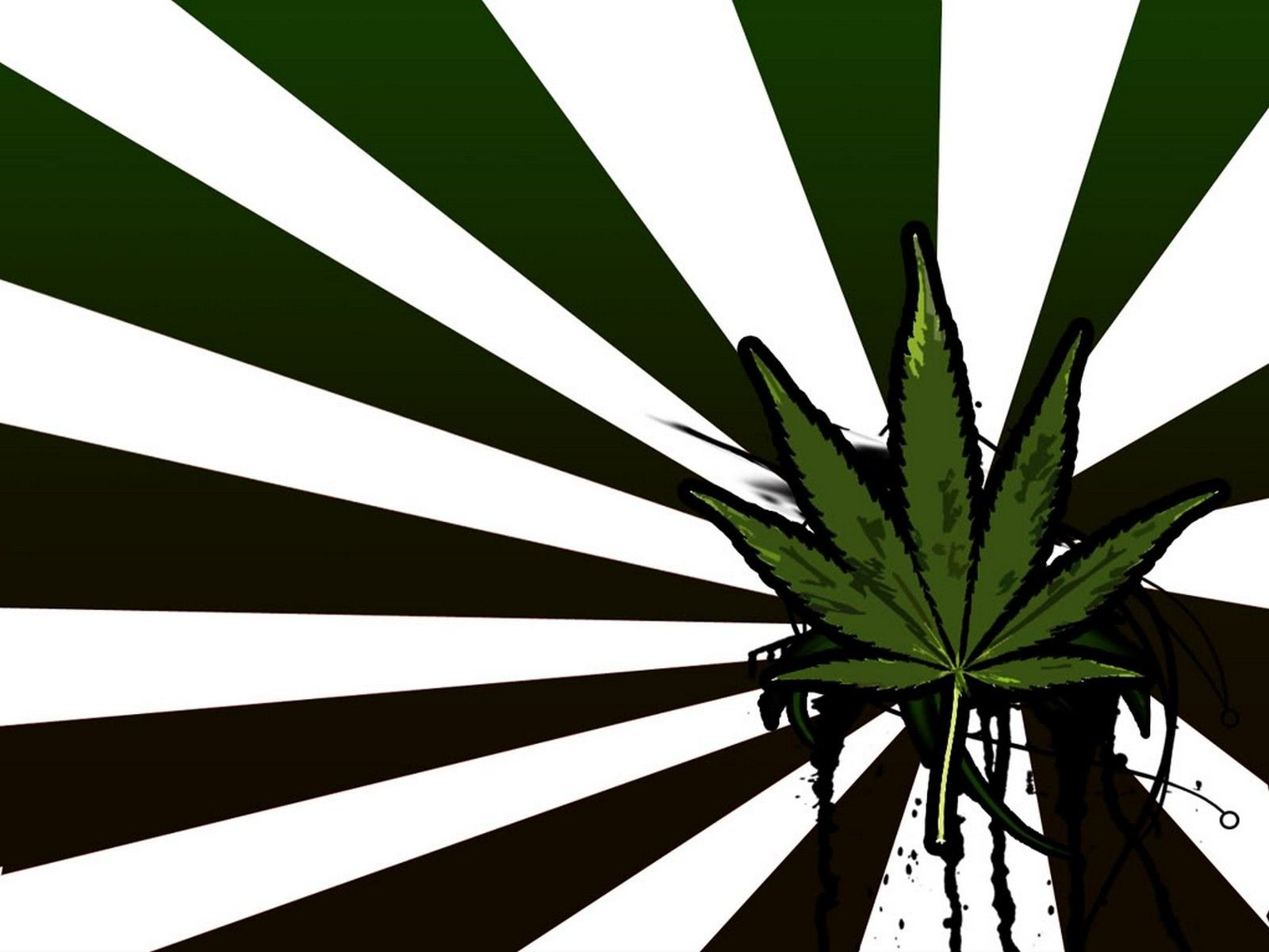 marijuana flag helping you show your true stoner pride