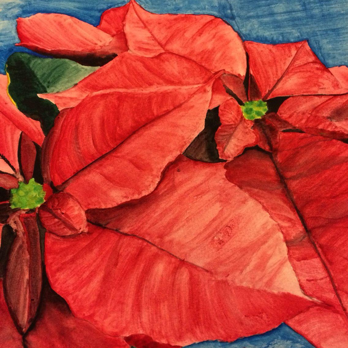 watercolor poinsettias wonderful art pinterest poinsettia