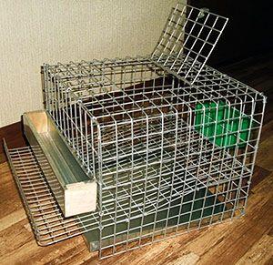 Разведение перепелов в домашних условиях: клетки, фото 97
