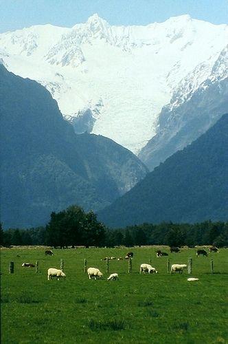 Amazing Places -  Fox Glacier - New Zealand (von GothPhil)