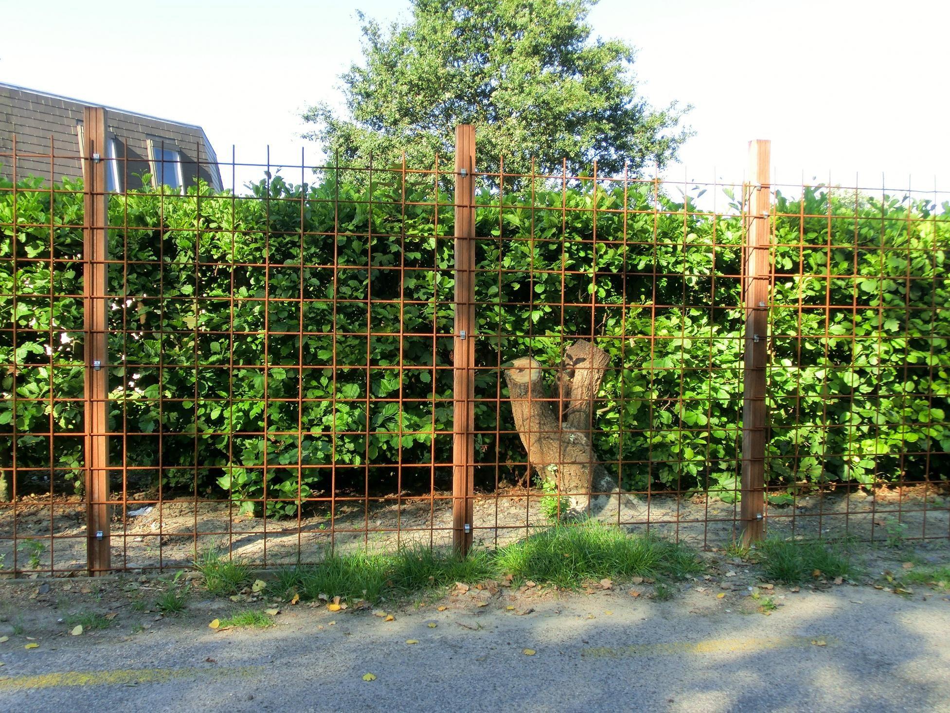 Bildergebnis Fur Baustahlmatte Garten Garten Garten Pflanzen
