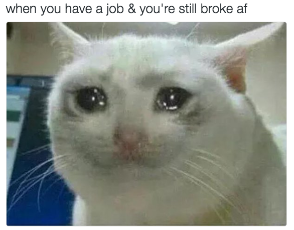 And being employed like: | 22 Pictures That Will Make Grad Students Laugh Harder Than They Should