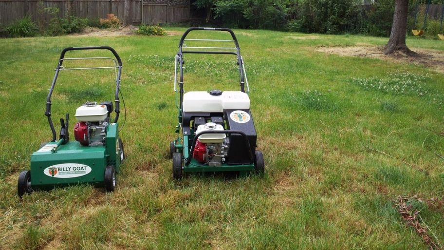 How Much Does Lawn Aeration Cost? Lawn, Lawn care