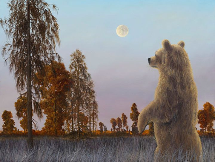 Robert Bissell Artwork Sage Of The Night 2013 Bear Art Fine