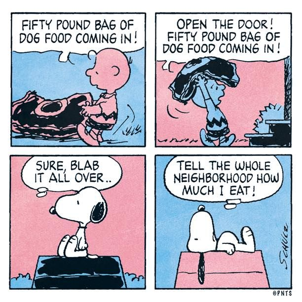 Food shopping for Snoopy.