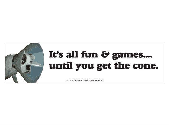 It's all fun & games until you get the cone (Bumper Sticker)