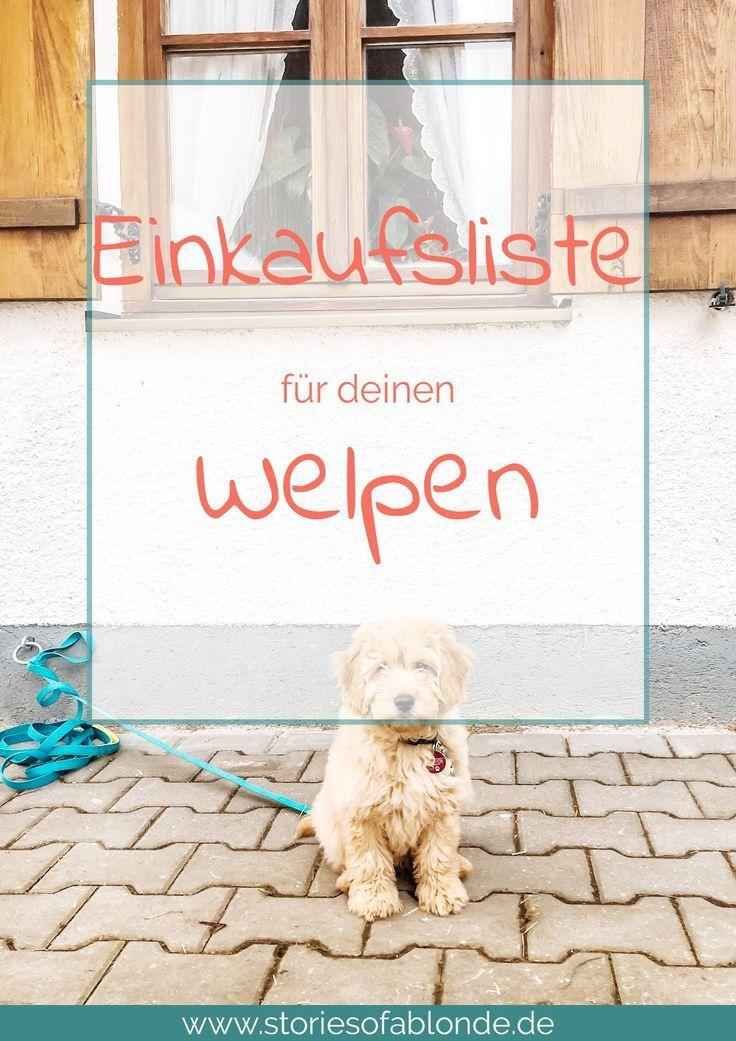 Einkaufsliste für einen Welpen Welpen, Hundewelpen und