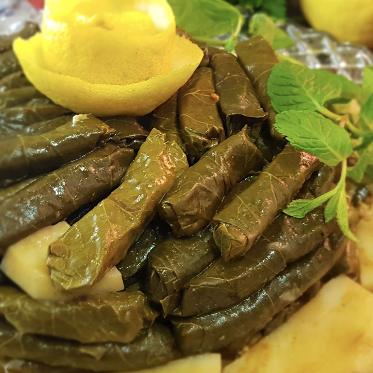 Stuffed Grape Leaves With Oil ورق العنب المحشي بالزيت Stuffed Grape Leaves Cooking Recipes