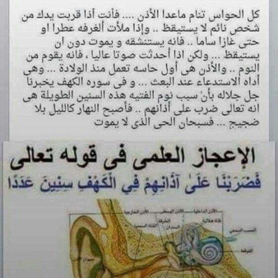 سبحان الله حاسة السمع والنوم العميق سورة الكهف Holy Quran Words Quran