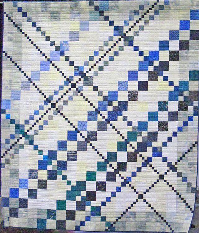 Opportunity Quilt And Silent Auction Asheville Quilt Guild Quilts Quilt Guild Blue Quilts