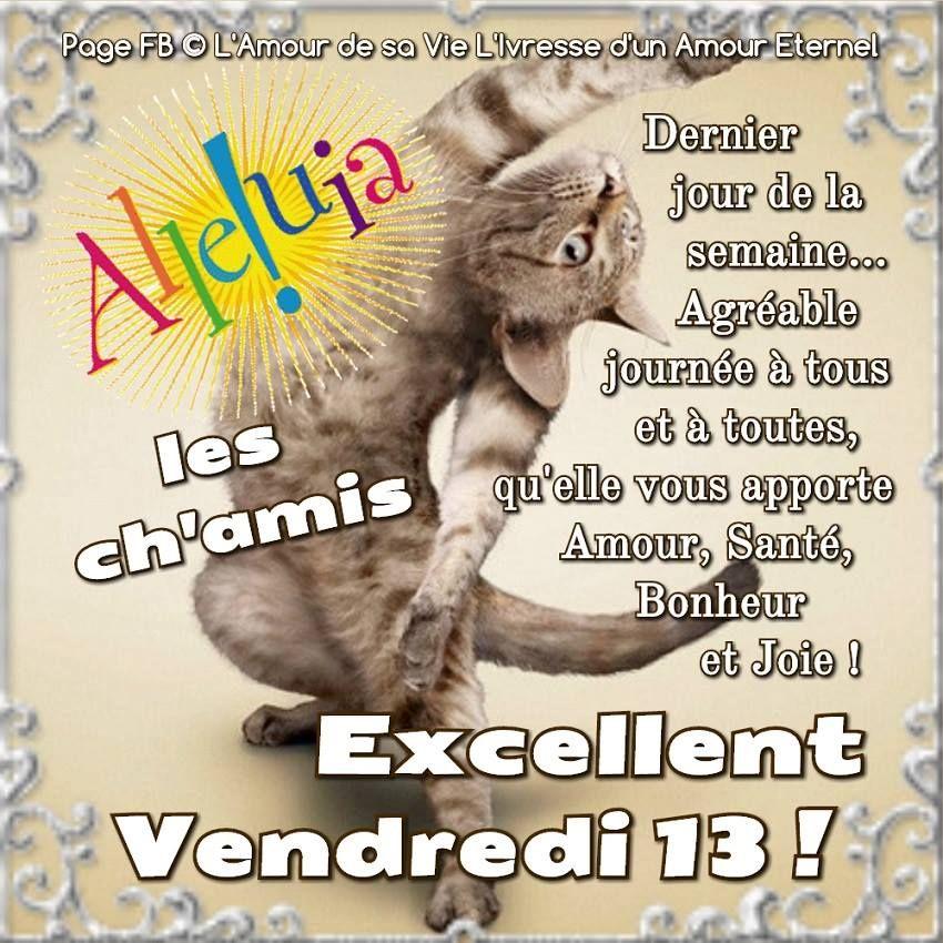 Excellent Vendredi 13 Vendredi13 Chat Drole Chance Bonheur Vendredi 13 Vendredi Image Drole Vendredi