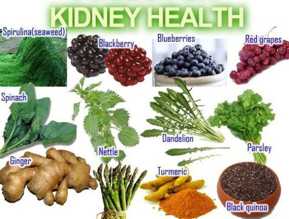 Natural Foods That Promote Good Kidney Function