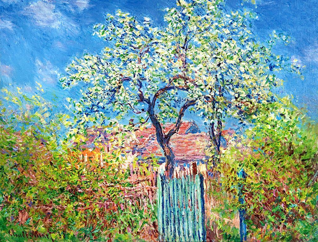 Claude Monet - Poirier en fleurs