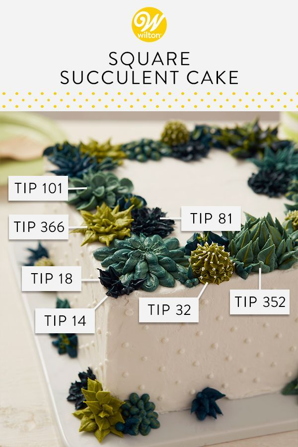 Succulent Cake Turn your cake into an edible garden with this Square Succulent Cake. Decorated with colorful green succulents and cacti, this square two-layer cake is great for birthdays, showers or retirement parties. Use the Deluxe Tip Set, complete with 22 different tips, to he