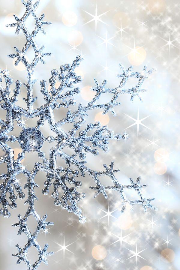 Winter Wonderland Party Christmas Wallpaper Snowflake Wallpaper Blue Christmas
