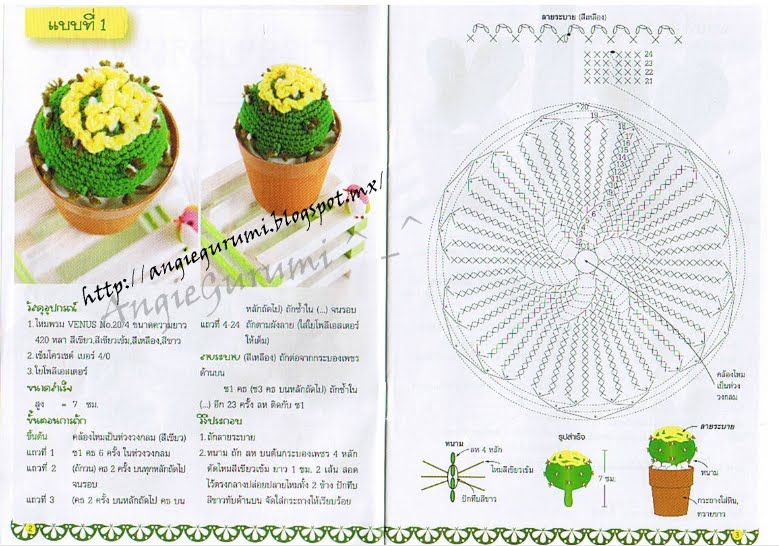 Amigurumi DIY by AngieGurumi: free   Cactus.   Pinterest   Cactus ...