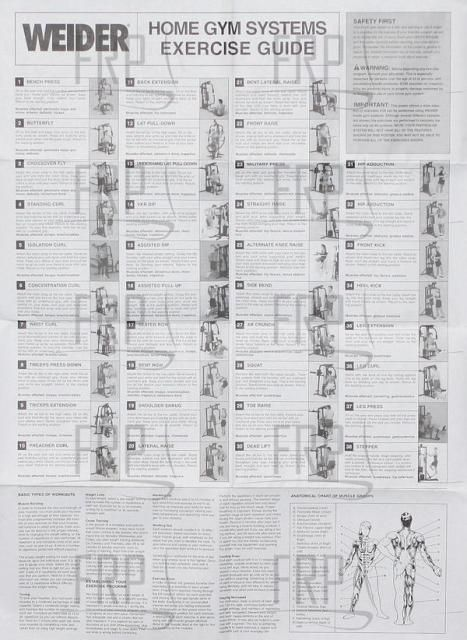 Weider Home Gym Exercise Chart Pdf : weider, exercise, chart, Workout, Equipment, Chart,, Workouts, Machines