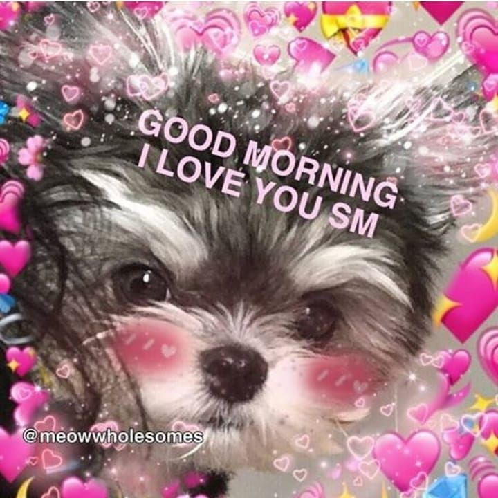 I Know It S The Afternoon But I Just Woke Up So Its Morning Cute Love Memes Cute Memes Love You Meme