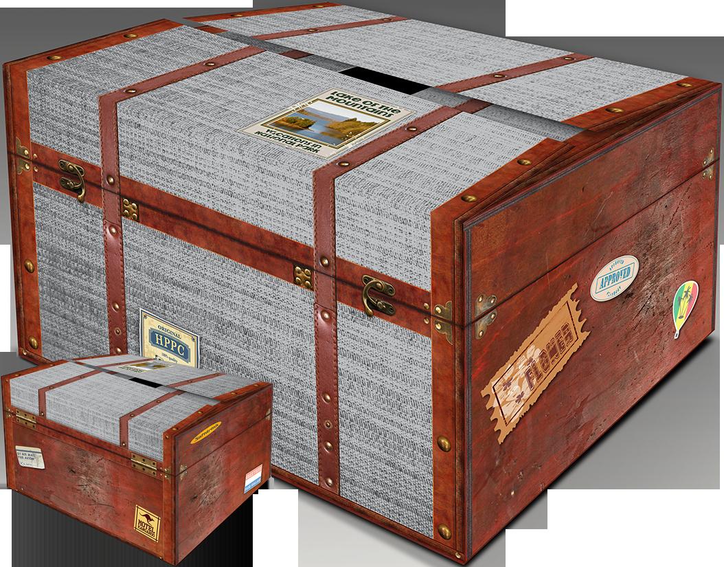 Suitcase carton box