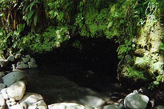 Bigelow (Deer Creek) Hot Springs (close to Terwilliger, but more
