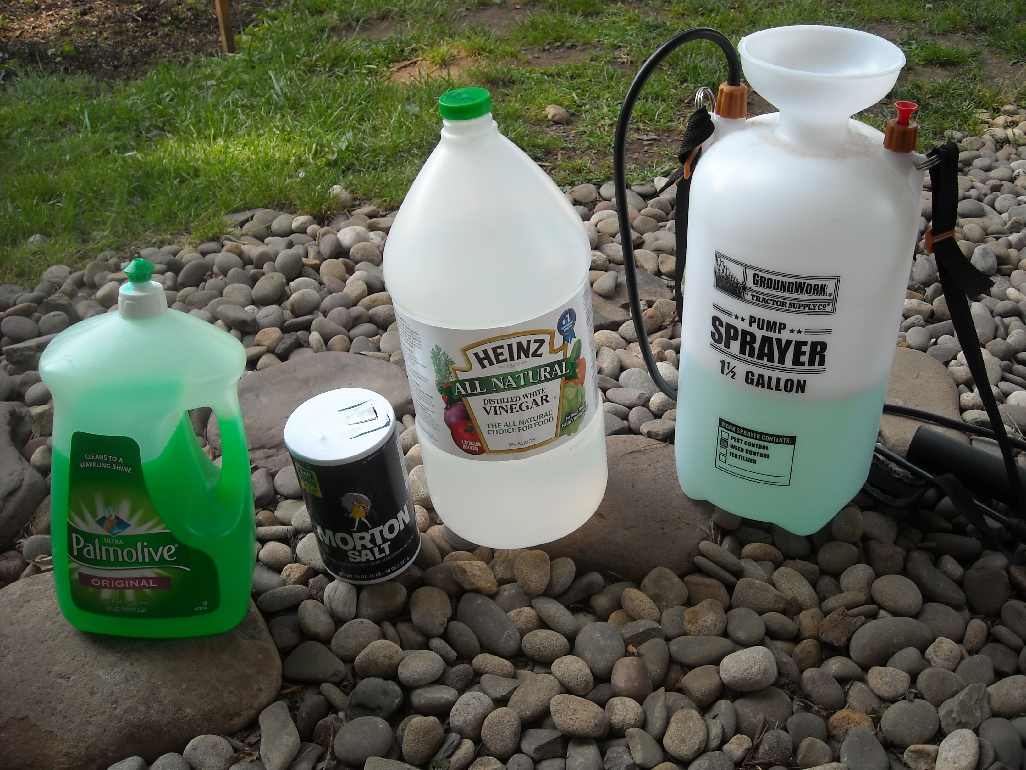 Homemade weed killer or gallons distilled white vinegar