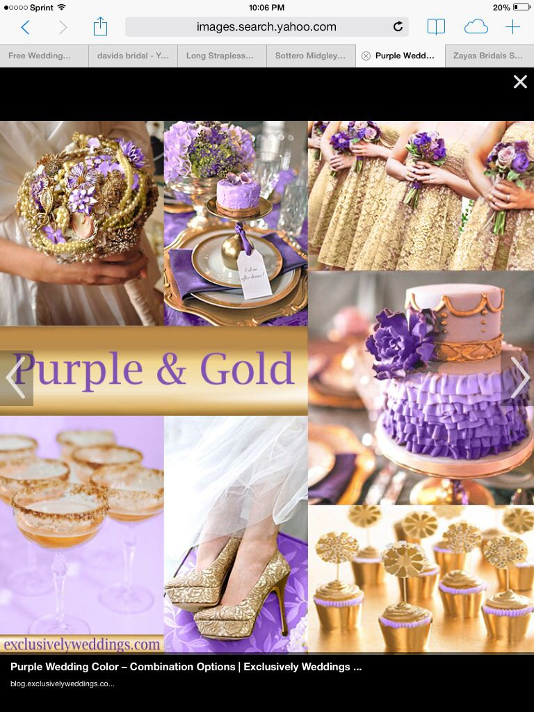 Purple Gold Beige