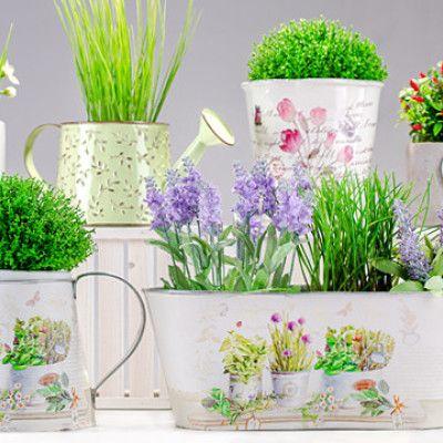Uprawa Ziol Zielnik Na Parapecie Urzadzone Plants Planter Pots Planters