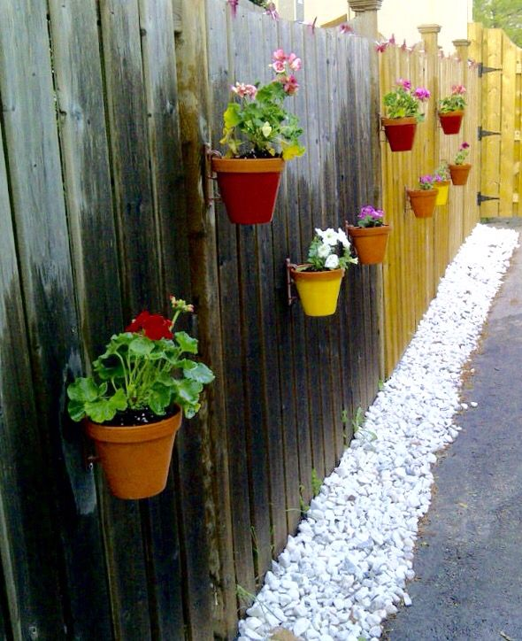 Turn A Dull Privacy Fence Into A Vertical Garden. Painted