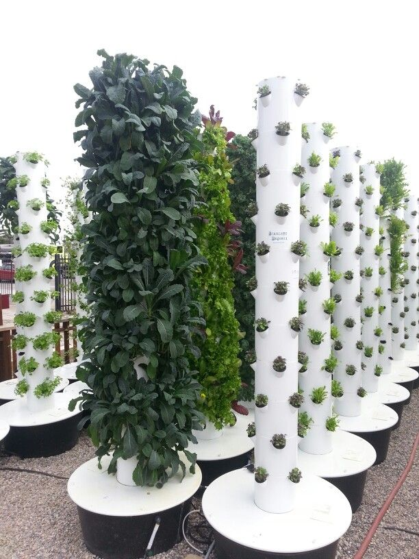 Efficient hydroponics vertical farming Who needs space for a
