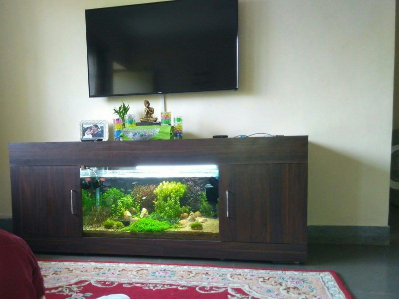 Fish Tank Aquarium Tv Table Unit Pinterest Tables Entertainment Center Surprising Images 33 Inspirations