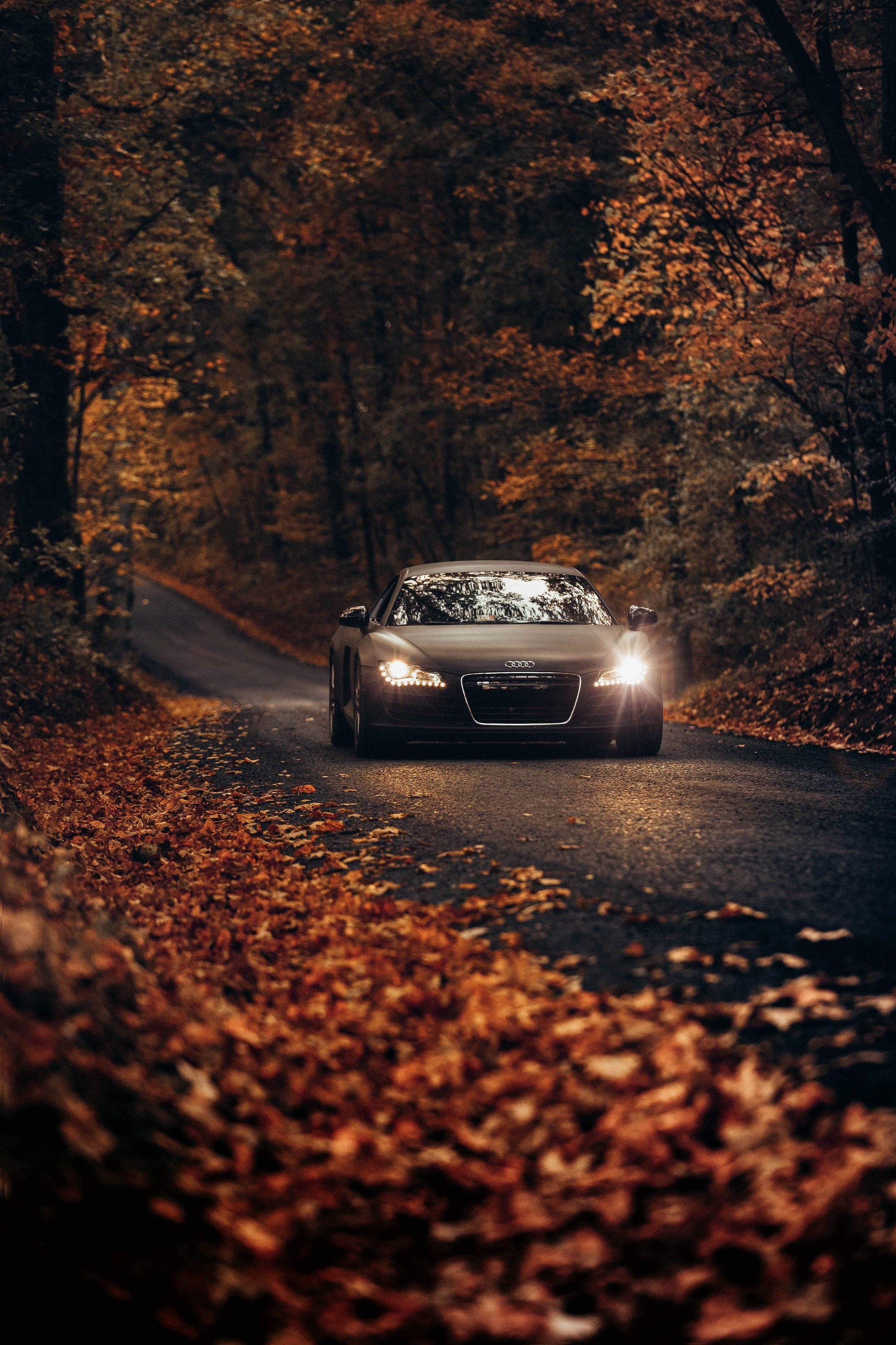 Audi R8 Black Matte Audi R8 Wallpaper Car Wallpapers 4 Door Sports Cars