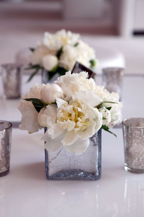 White orchids and bud vases full of ranunculus cover