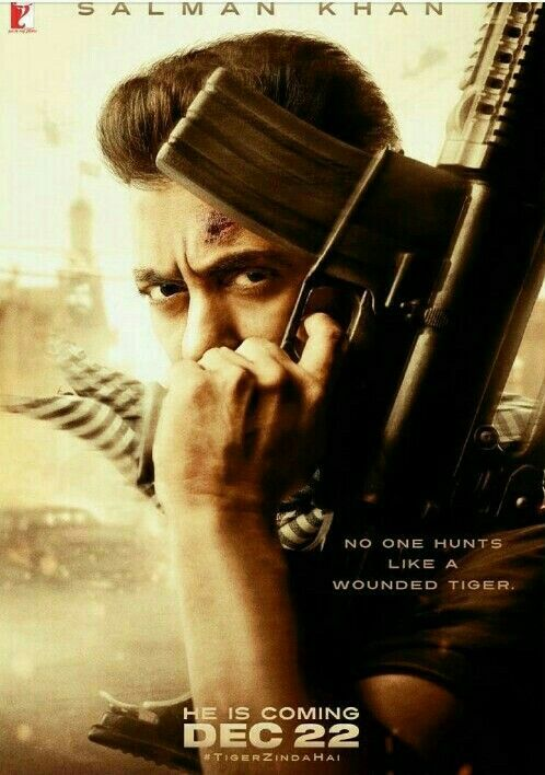 Tiger Zinda Hai 2012 Malayalam Movie Dvdrip Download Movie