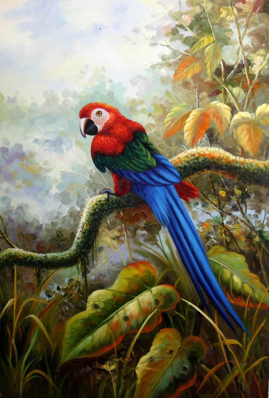 19e885304c230e30e0957304e6ab586d.jpg (1020×1506) Birds