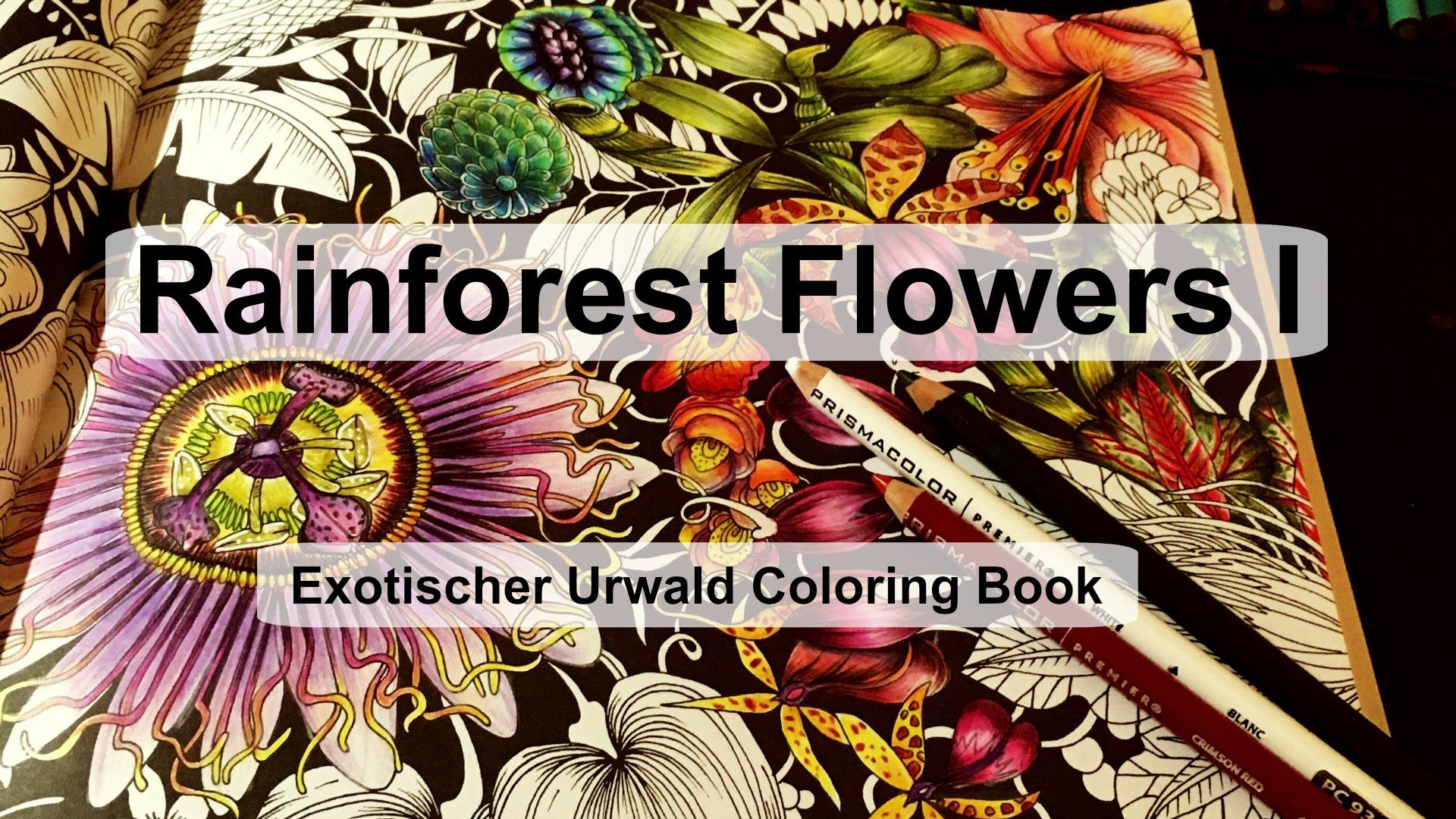 Coloring Books Rainforest Flowers
