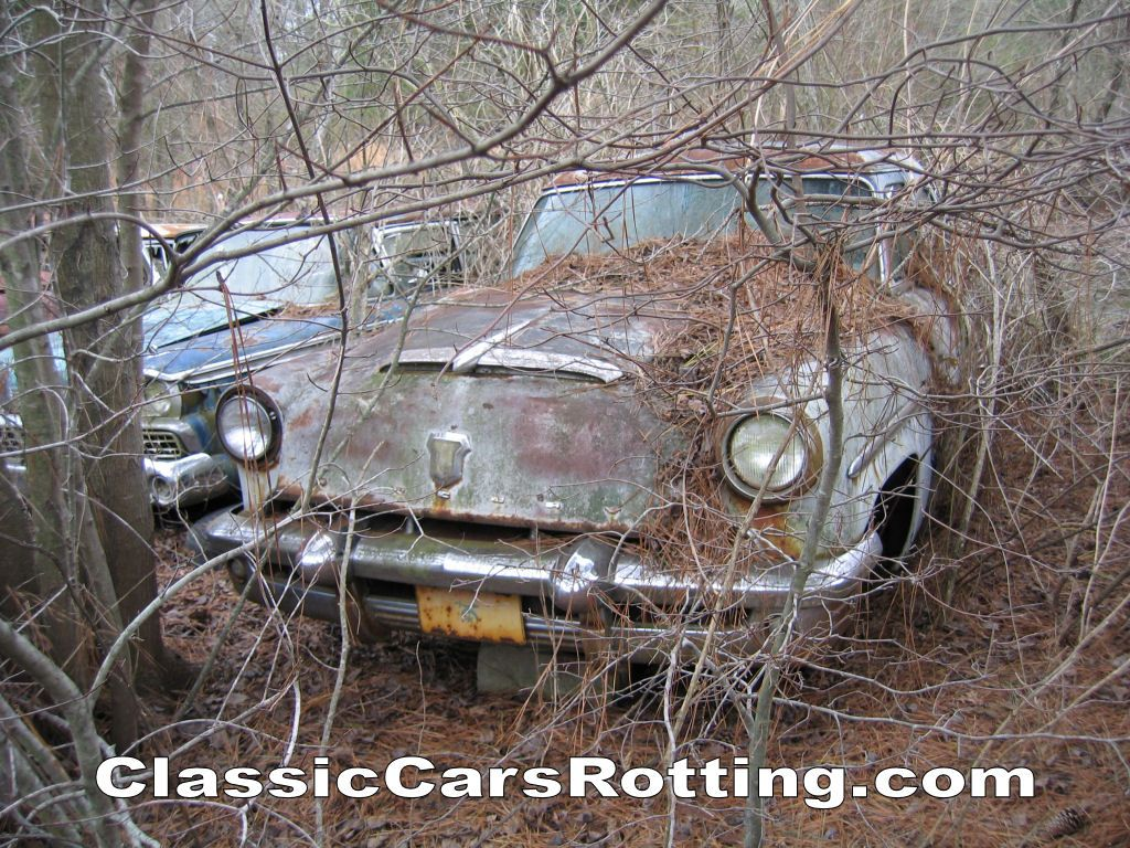 Junk Car Removal Get An Offer In Minutes Wallpaper Image 1024x768 Of 1953 Mercury Car Rust In Peace Barn Finds