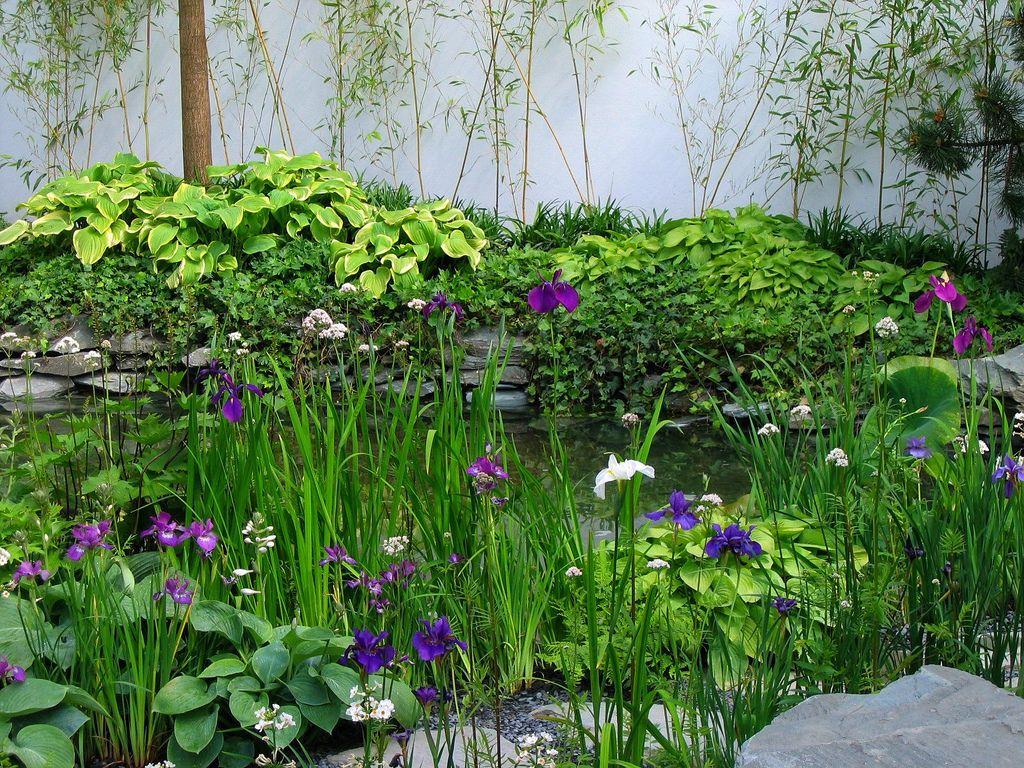 The Chinese Moon Gate Garden Garden Inspiration Gorgeous Gardens Chinese Garden