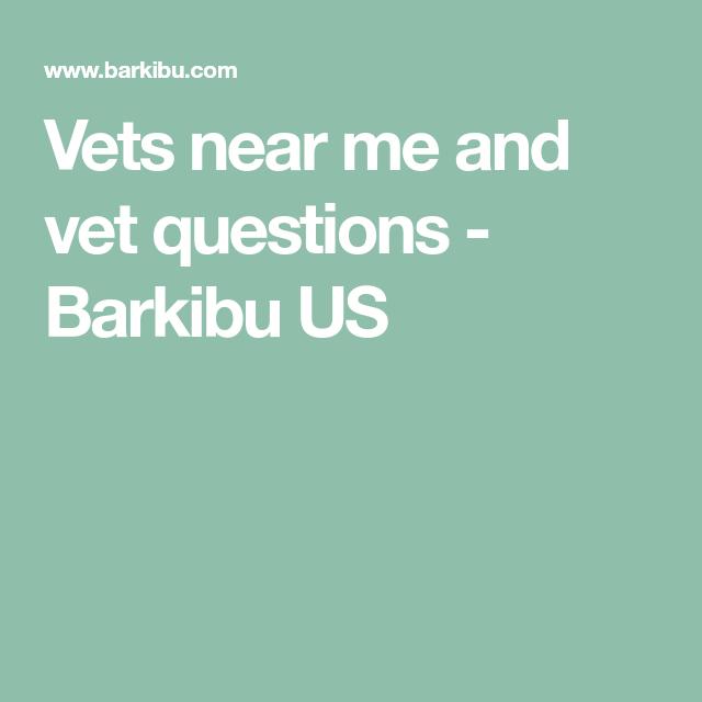 Vets Near Me And Vet Questions Barkibu Us Vet Questions This