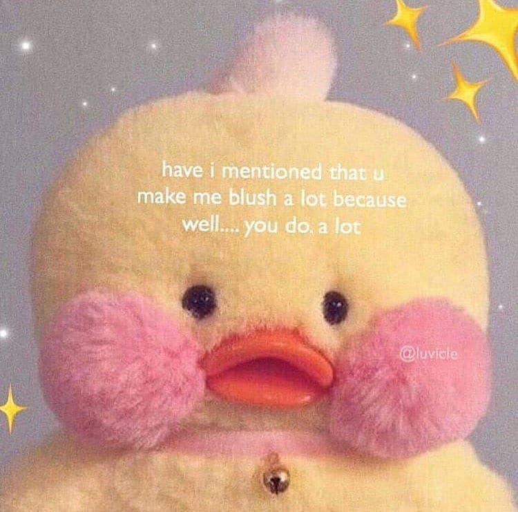I Make You Blush Even More Cute Memes Cute Love Memes Wholesome Memes
