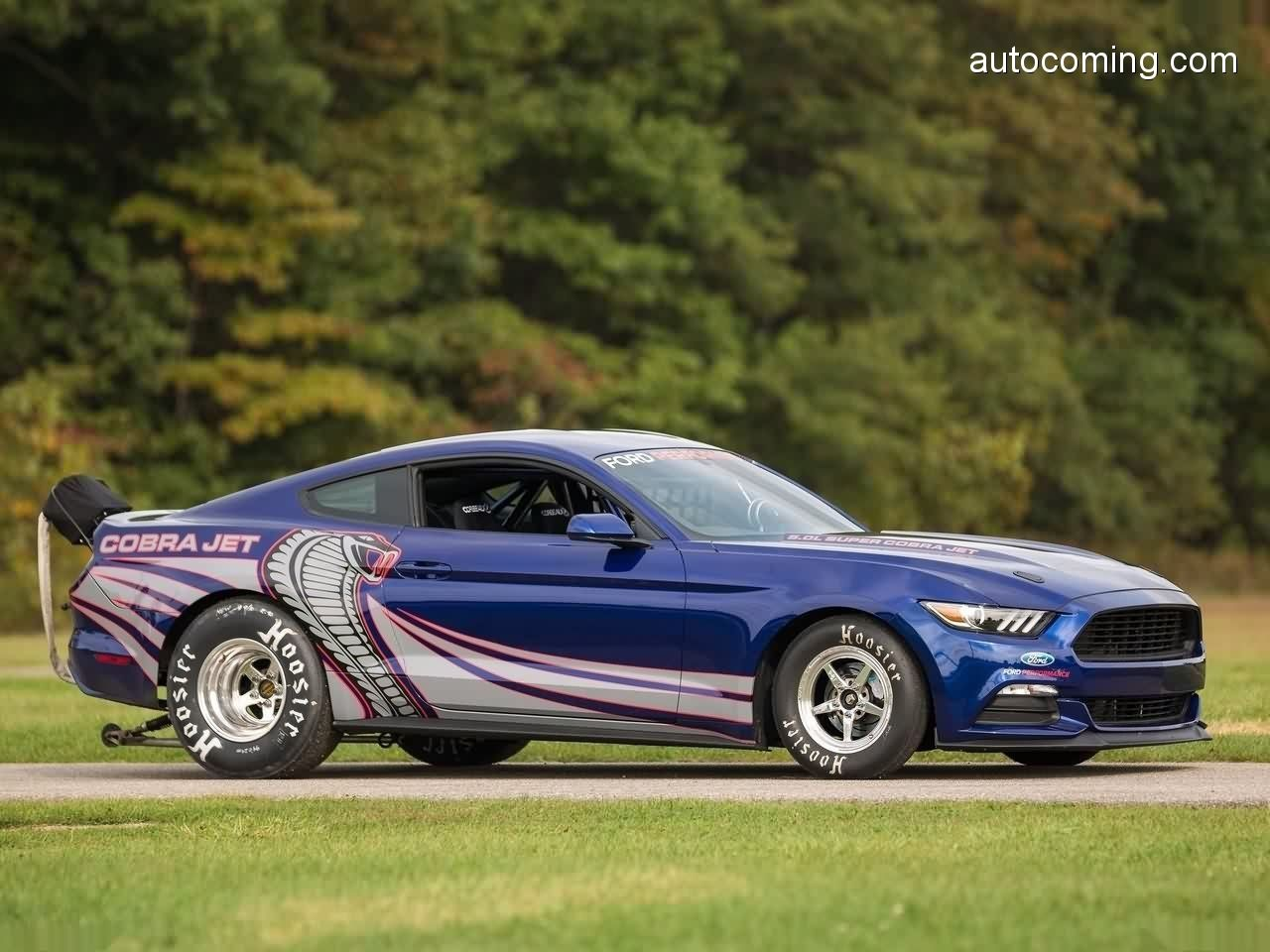 Ford Mustang Cobra Jet 2016 Mustang Mustang Cars Ford