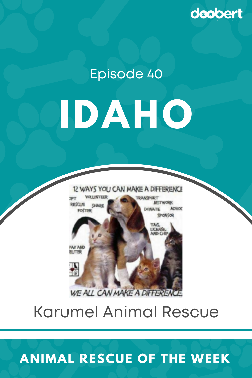 Animal Rescue Of The Week Episode 40 Karumel Animal Rescue In 2020 Animal Rescue Rescue Animals