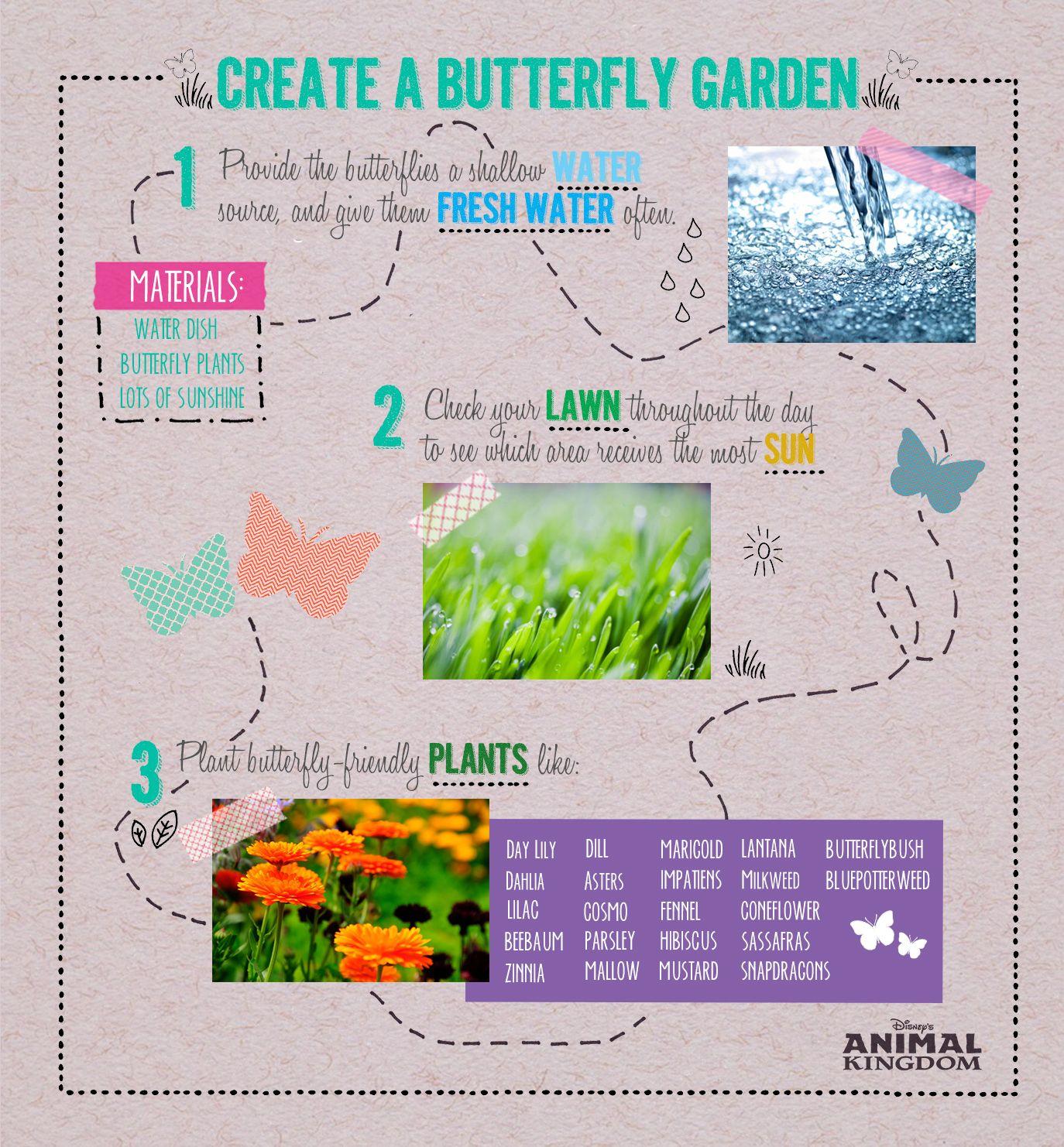 Diy Create A Butterfly Garden Butterfly Garden 400 x 300