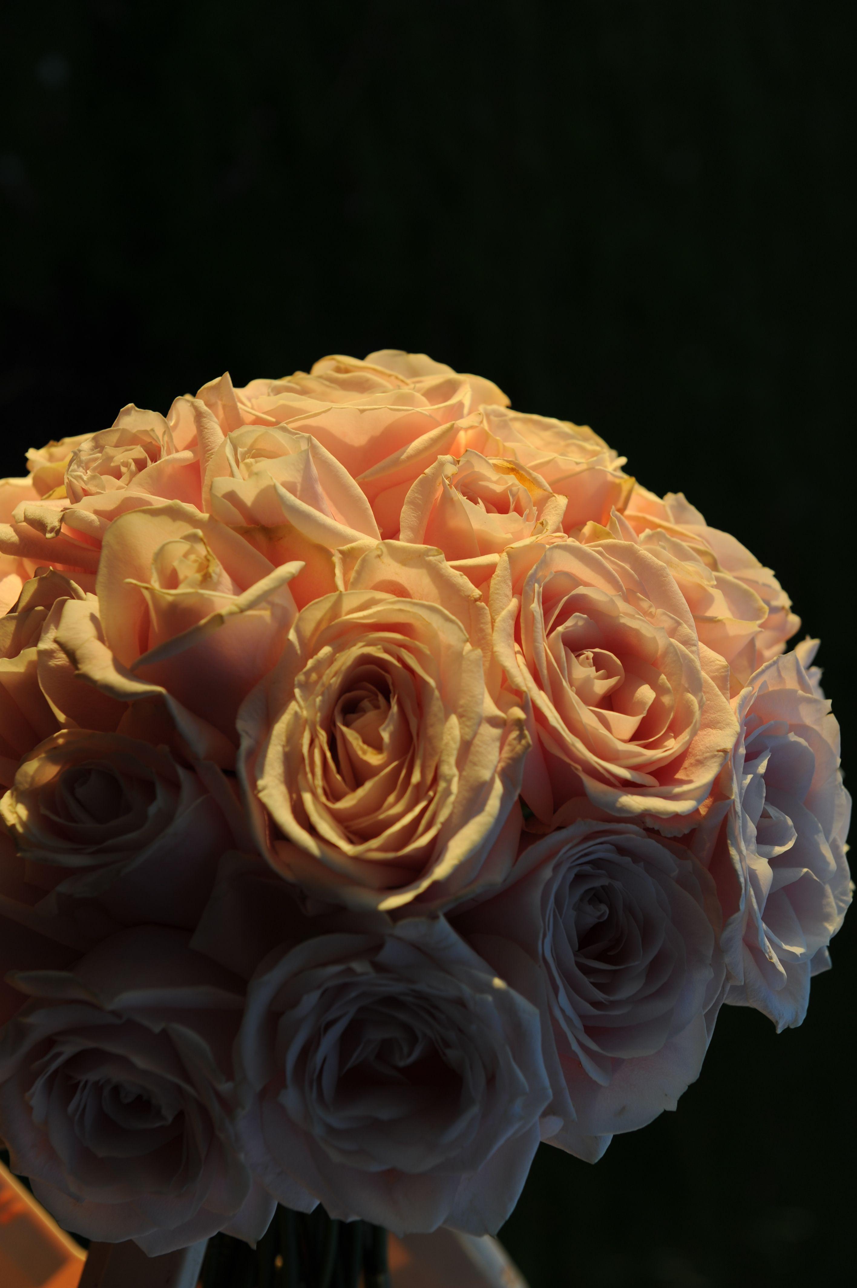W detail of peach roses Oldacre Wedding Flowers Pinterest